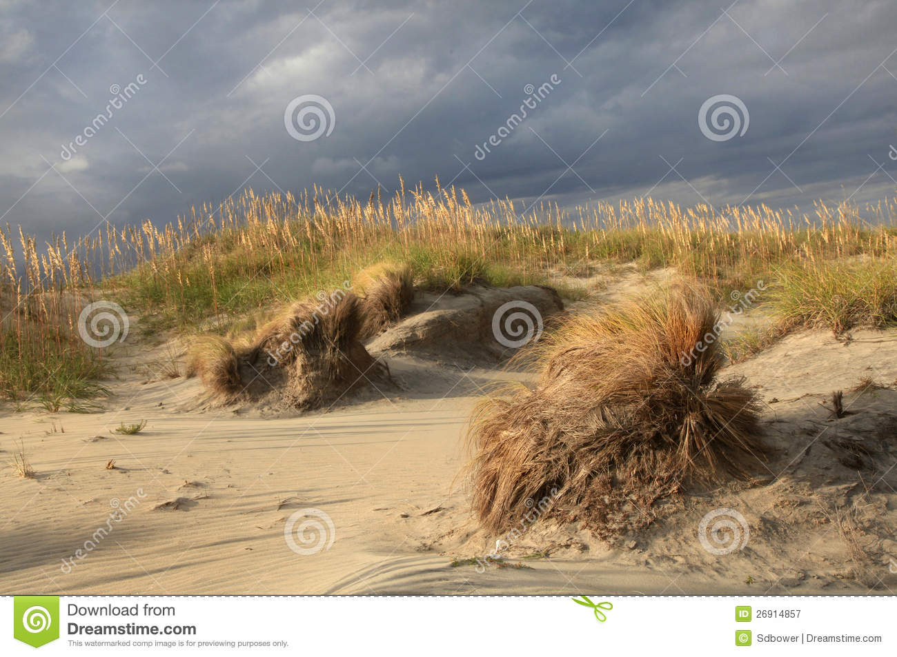 Sea, Sand And Dunes Stock Photos.