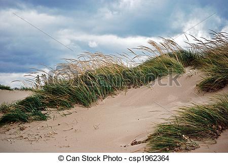 Stock Photo of Sand Blown.