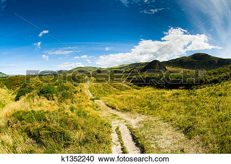 Stock Photography of rural scenery at dunedin k1352240.