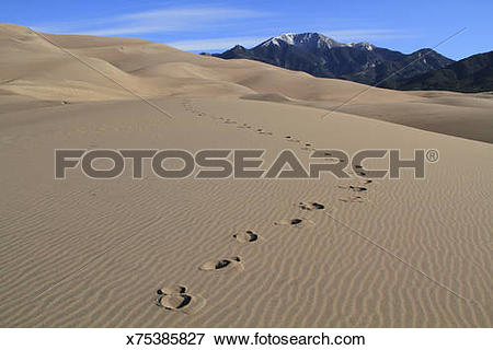 Picture of Great Sand Dunes National Park x75385827.