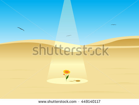 "dune Flower"" Stock Photos, Royalty."
