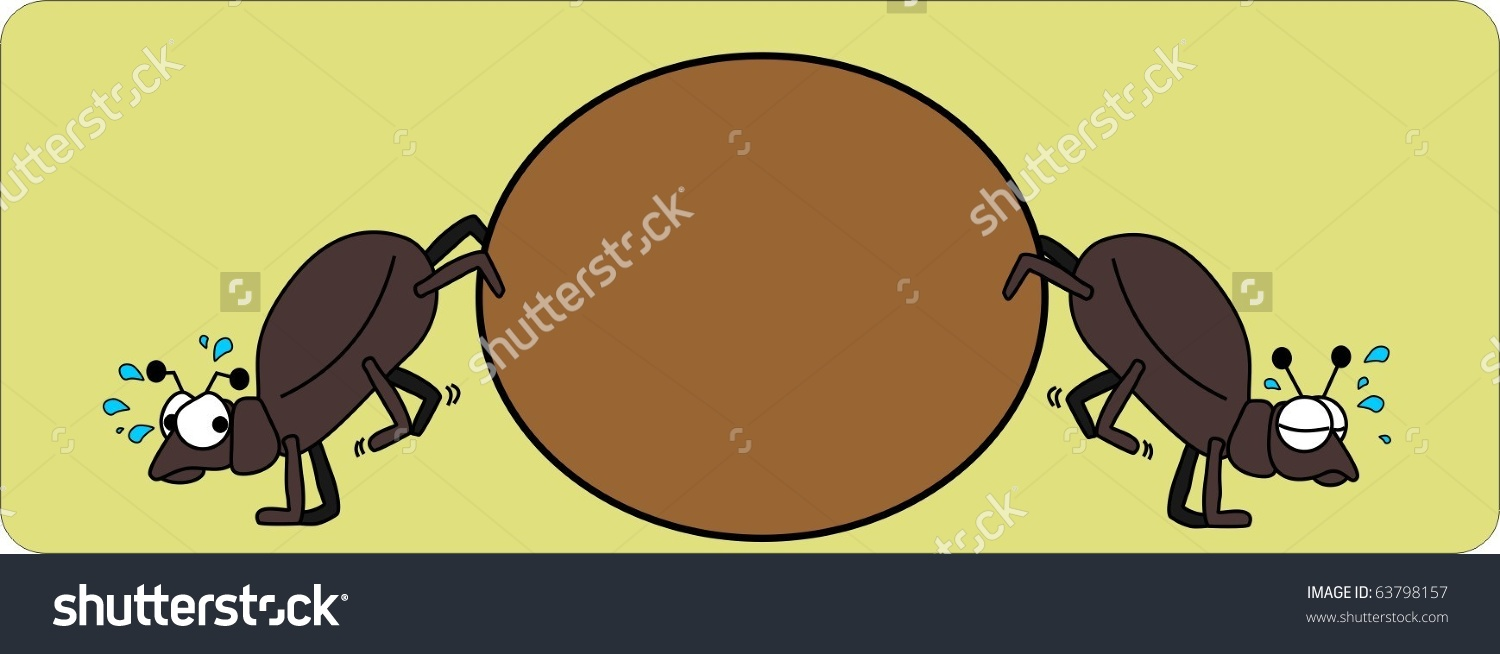 Two Dung Beetles Wrestle Ball Dung Stock Vector 63798157.