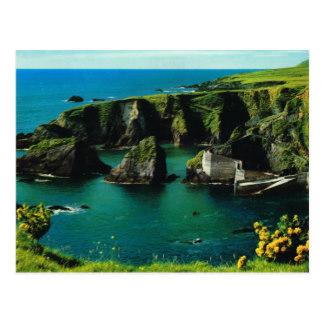 Ireland T.
