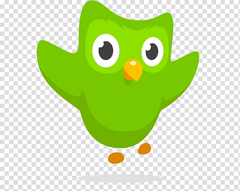 Duolingo Owl Foreign language Learning, helicopters.