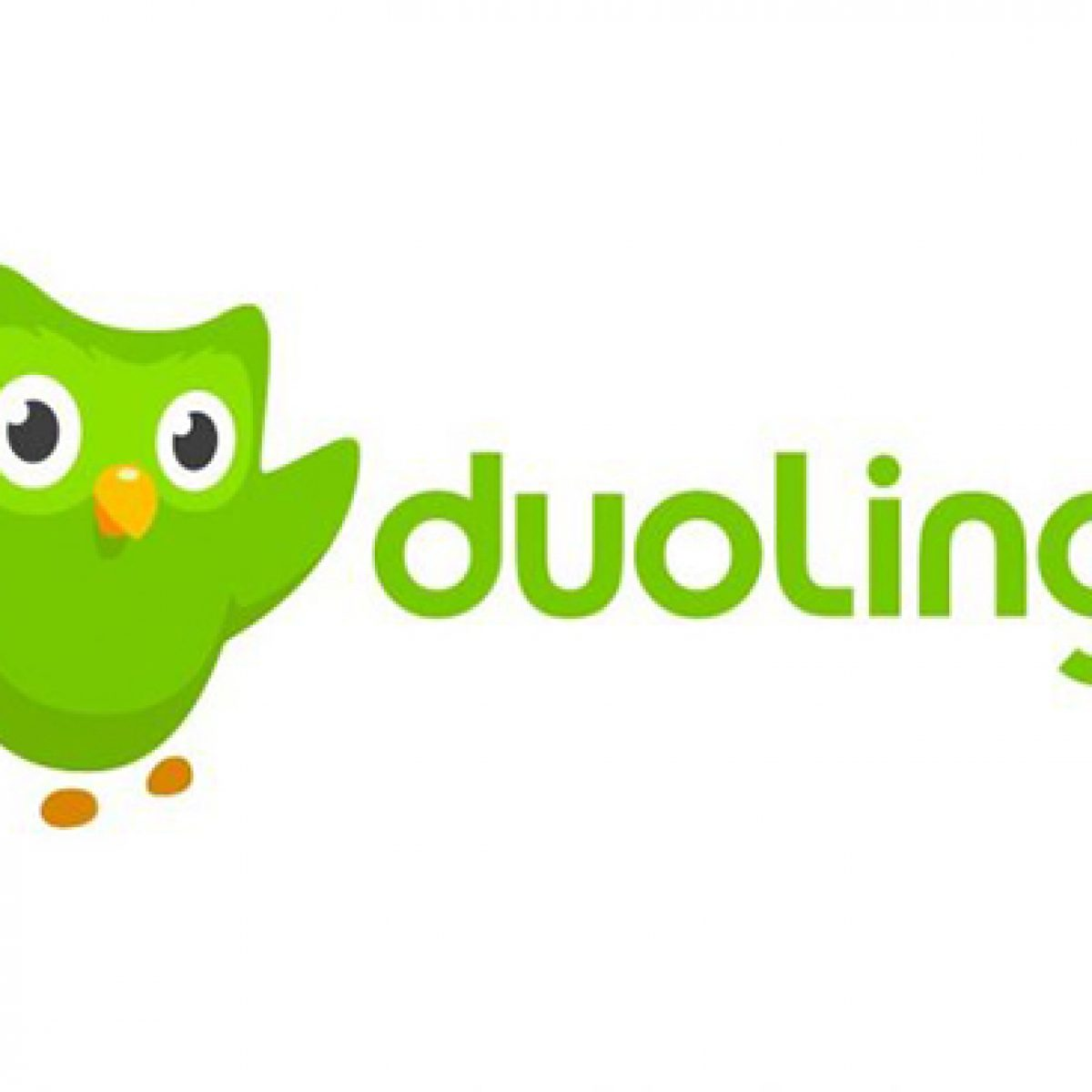 How Does Duolingo Make Money?.