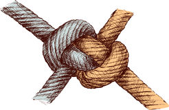 Durable Knot Stock Illustrations.
