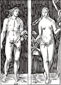 and Eva; by Dürer.