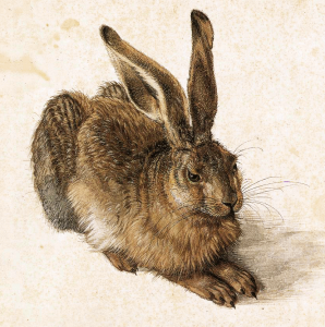 Rabbit 3 Clip Art Download.