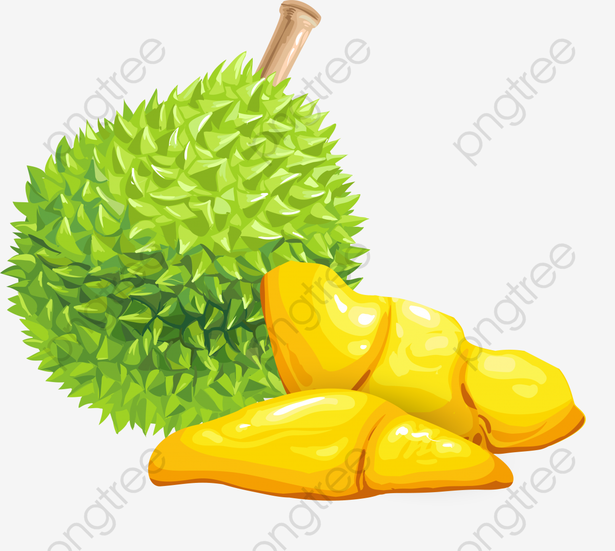Vector Cartoon Durian, Durian, Vector Pattern, Fresh PNG and Vector.