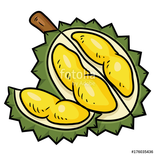 Durian Cartoon Illustration of cute cartoon durian.