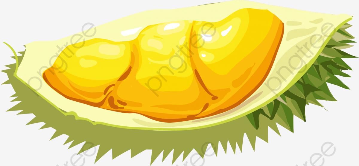 Cartoon Special Durian, Cartoon Vector, Durian Fruit, Delicious Food.
