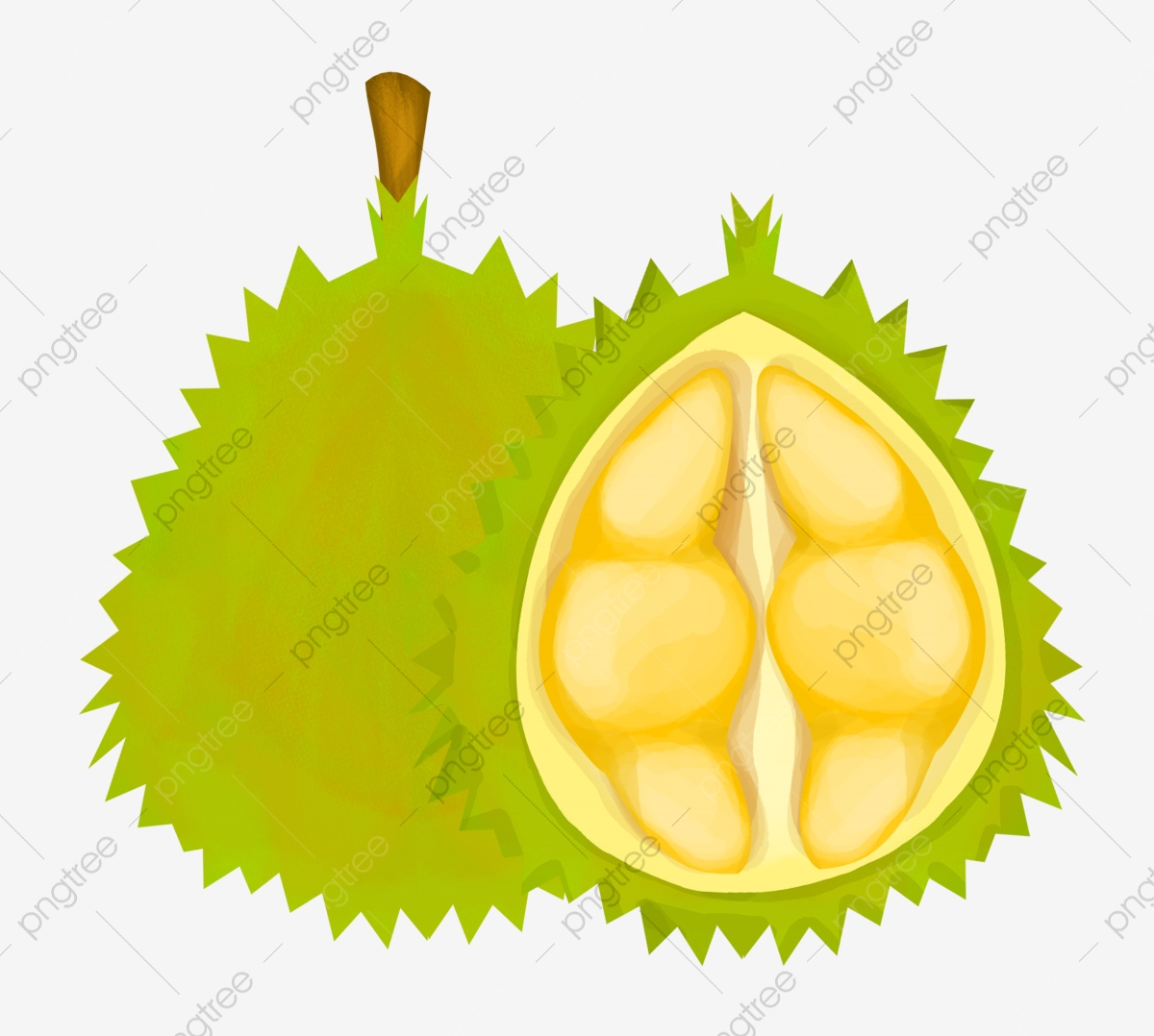 Vector Cartoon Durian, Durian, Cartoon Durian, Vector Durian PNG and.