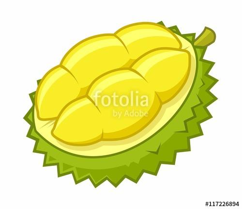 Durian Cartoon Vector Illustration