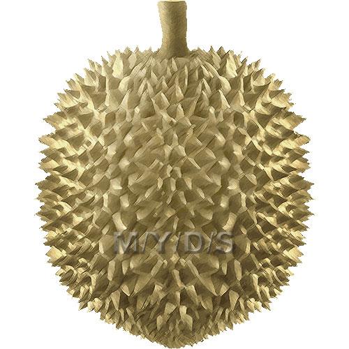 Durian clipart / Free clip art.