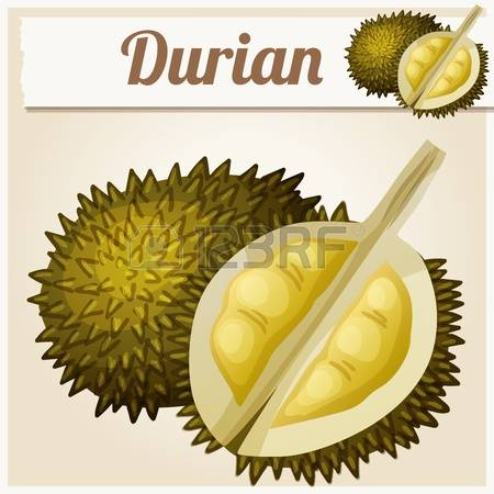 624 Durian Fruit Cliparts, Stock Vector And Royalty Free Durian.
