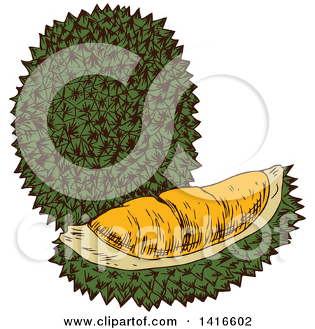 Clipart of a Durian Fruit.