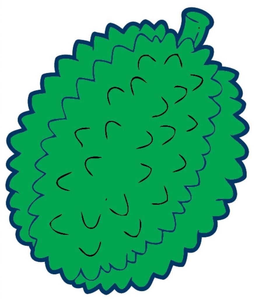 durian fruit clip art pictures clipart panda free clipart images.