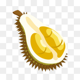 Durian Vector PNG and Durian Vector Transparent Clipart Free.