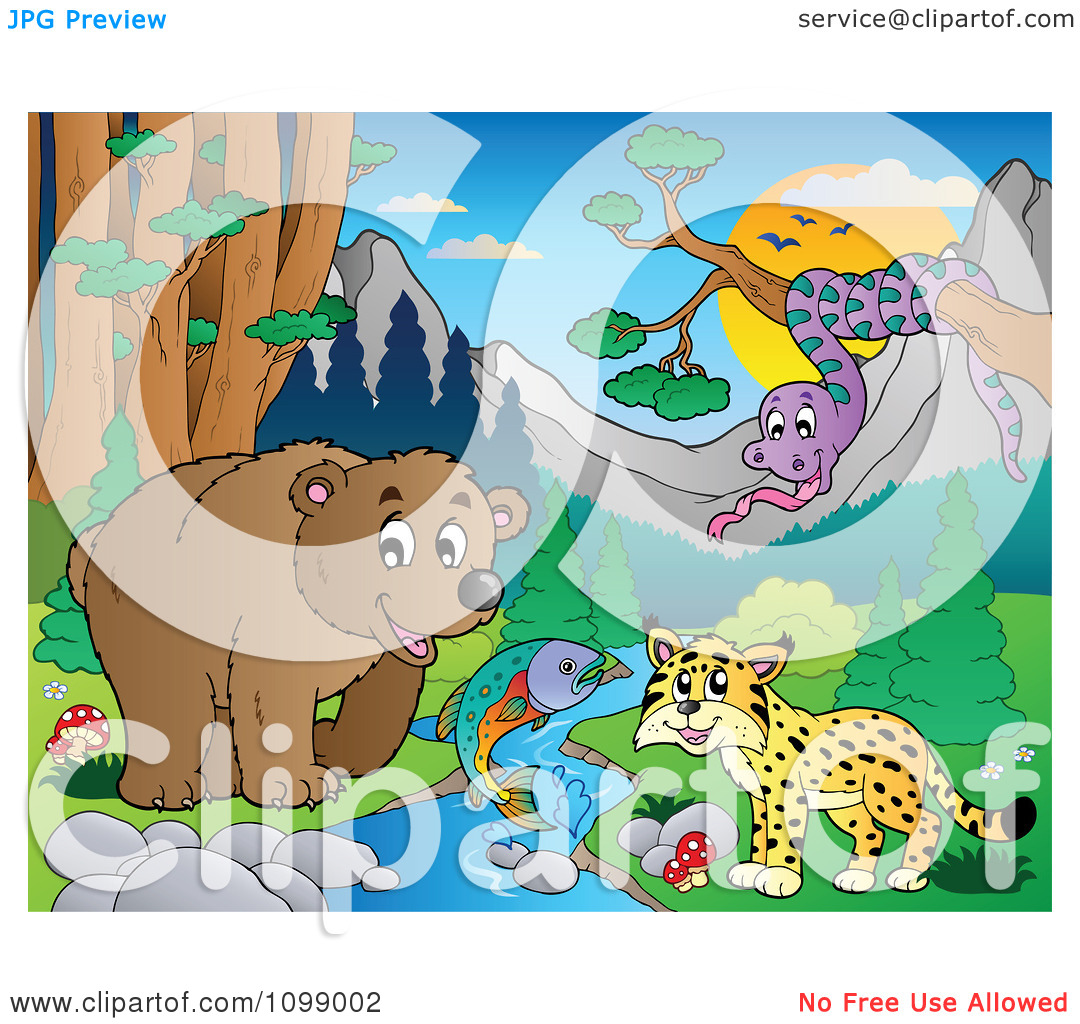 Clipart Bear Fish Wildcat And Snake By A Stream During The Day.