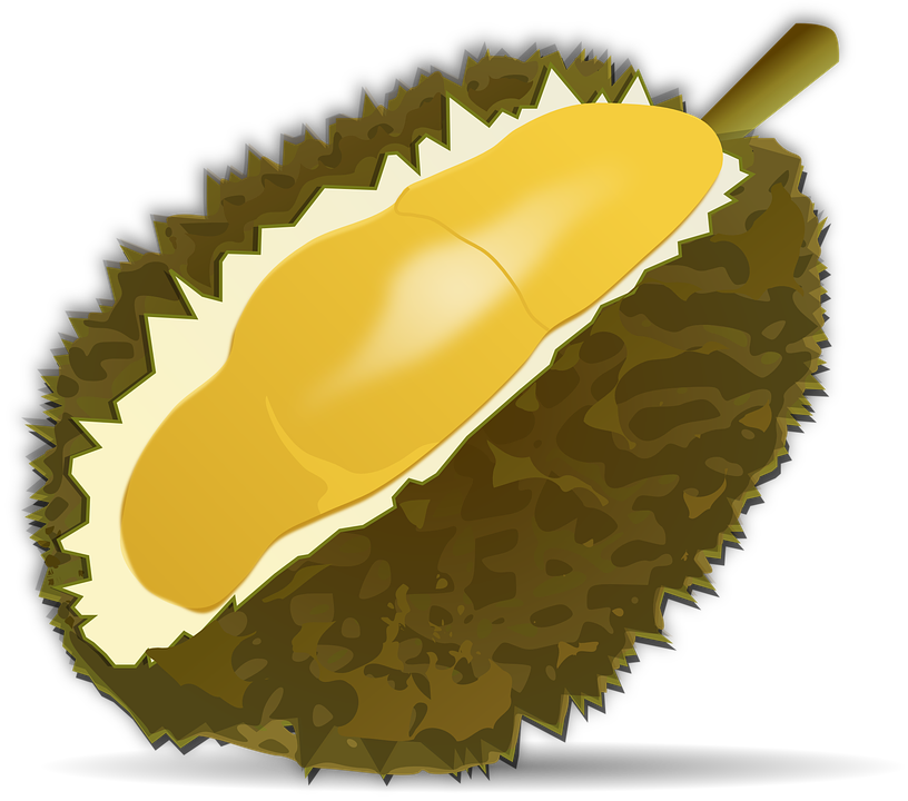 Free vector graphic: Durian Fruit, Fruit, Food, Durio.