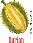 Durio Vector Clip Art EPS Images. 3 Durio clipart vector.