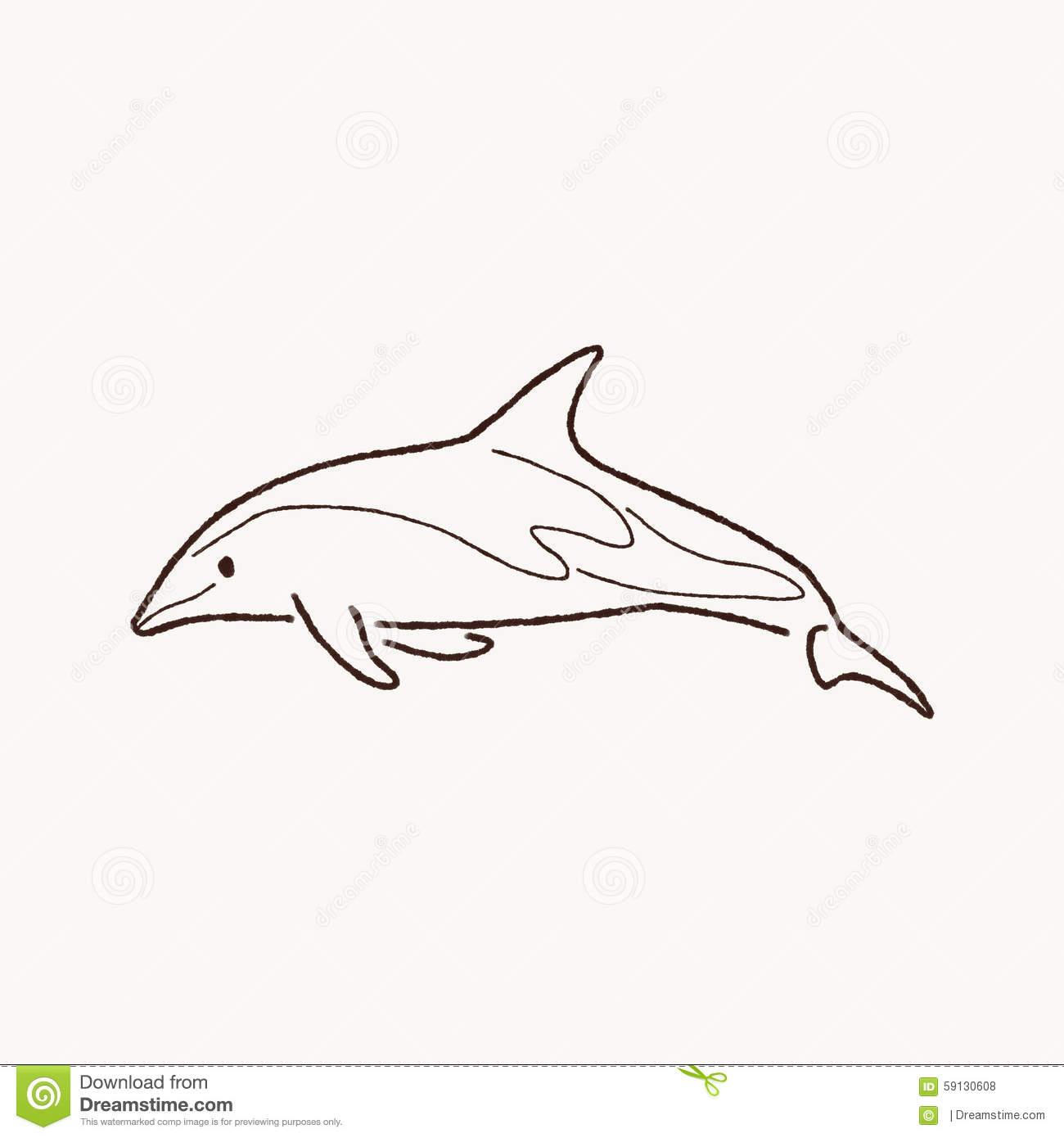 Dusky dolphin clipart.