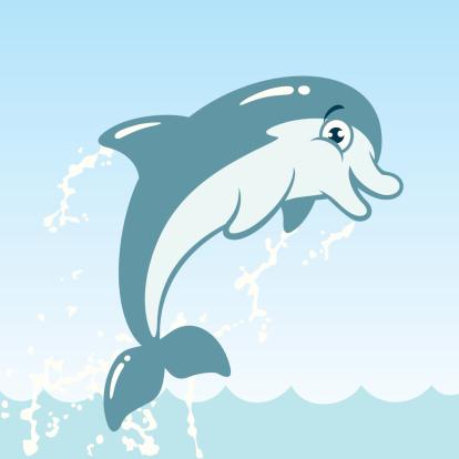 Dusky Dolphin Clip Art, Vector Images & Illustrations.