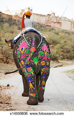 Stock Images of Painted elephant with mahout walking on dust road.