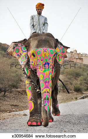 Stock Photo of Painted elephant with mahout walking on dust road.