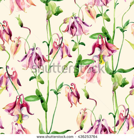 Wild Columbine Stock Photos, Royalty.