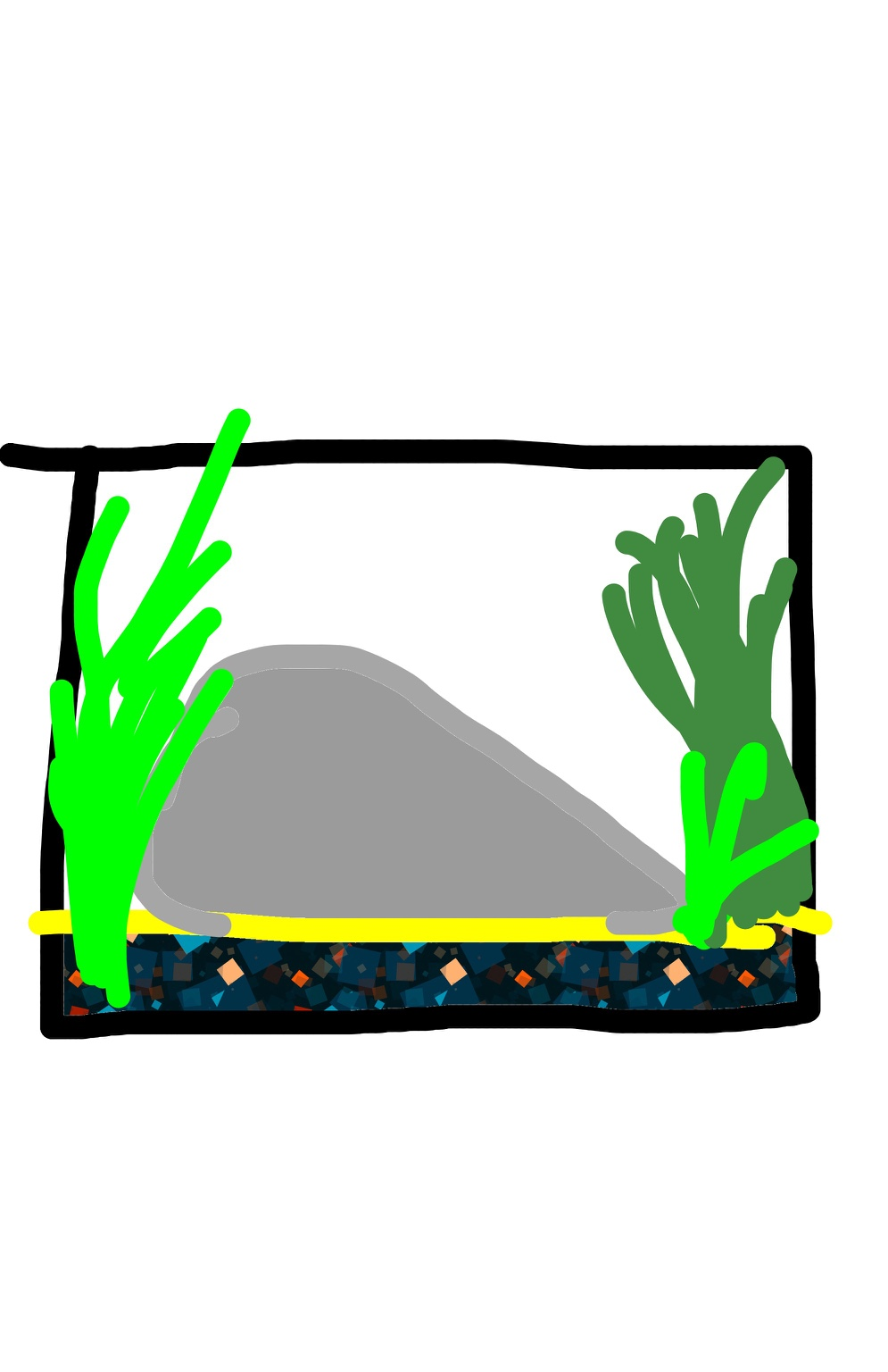 1 gallon tank design.