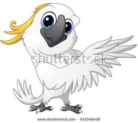 Cockatoo Stock Photos, Royalty.