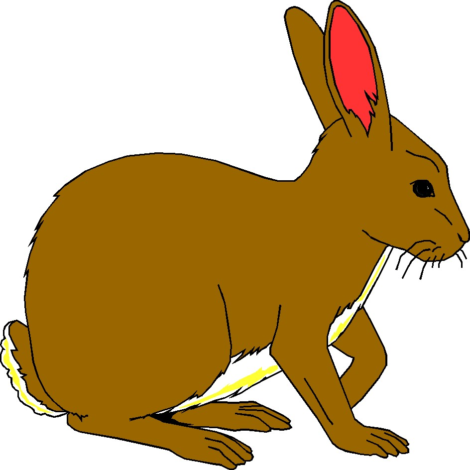 Free Rabbit Clipart Pictures.