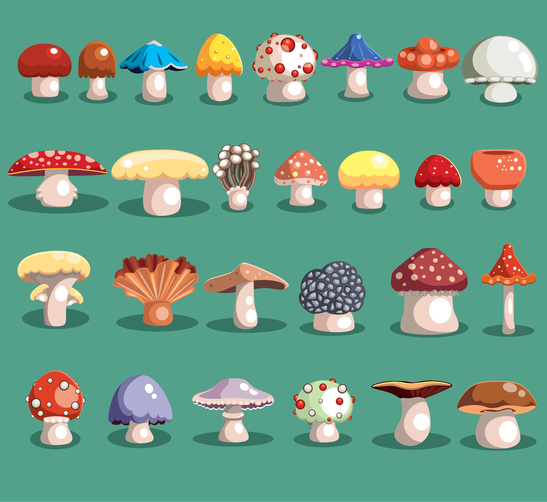 Healing Power of the Mushroom.