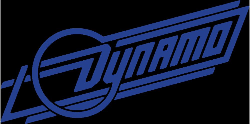 Image result for dynamo logo.