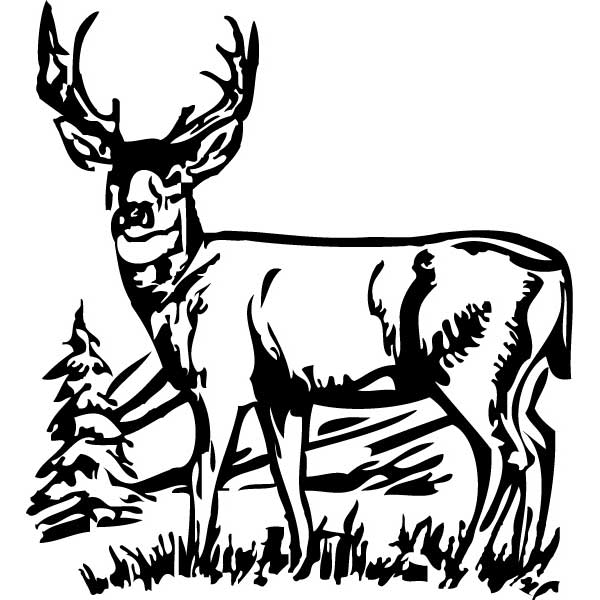 Buck clipart black and white.