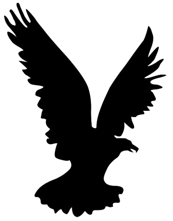 Bald Eagle Bird Silhouette Clip art.