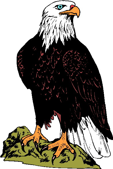 Eagle clipart free graphics of eagles 2 3.