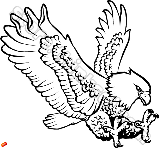 Black And White Clipart Eagle.