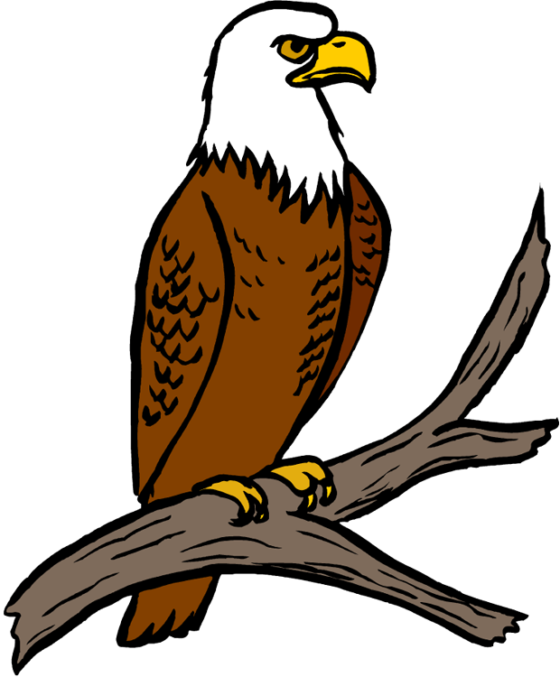 Eagle clipart easy, Eagle easy Transparent FREE for download.
