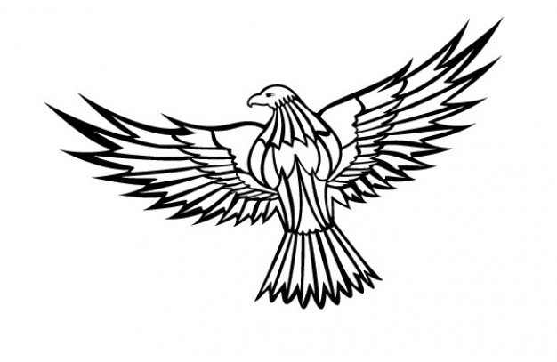 Flying eagle clipart Vector.