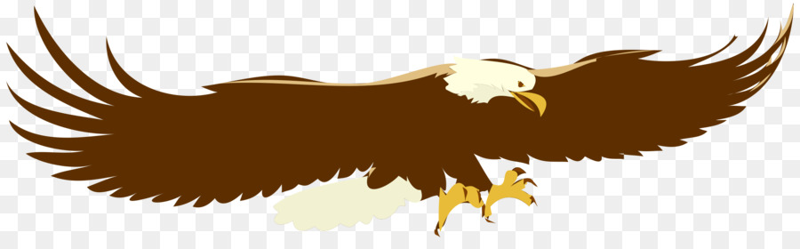 Eagle Birdtransparent png image & clipart free download.