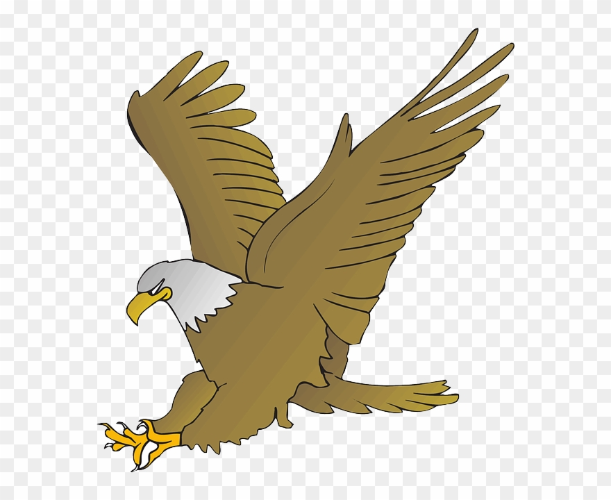 Free Eagle Clipart.
