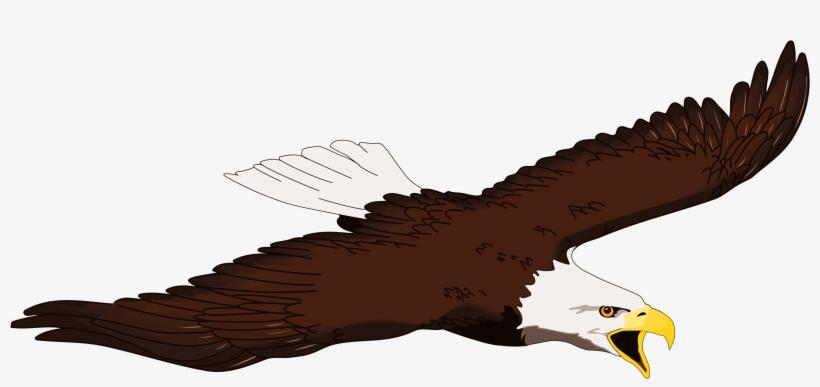 Eagle Clipart Free Clipart.