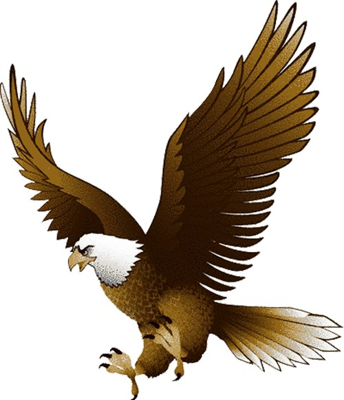 Free Free Eagle Images, Download Free Clip Art, Free Clip.