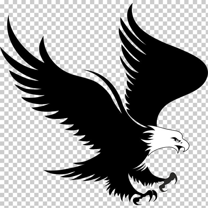 Bald Eagle Logo , eagle, black and white eagle illustration.