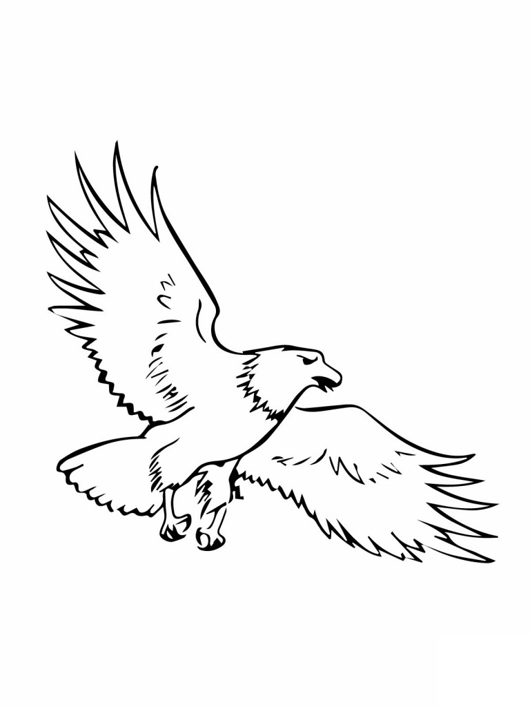 Free Eagle Outline Cliparts, Download Free Clip Art, Free.