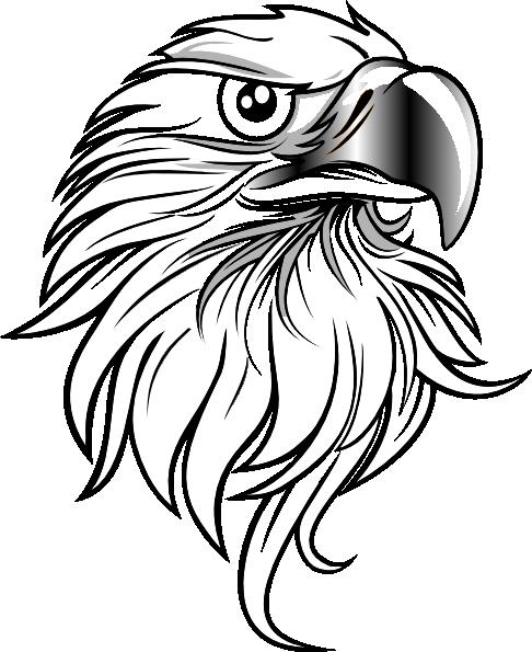 Eagle PNG, SVG Clip art for Web.