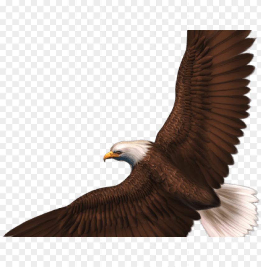 olden eagle clipart aguila.