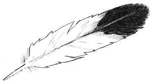 Image result for eagle feather.